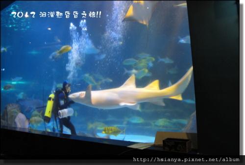 20120714海洋公園 (13)