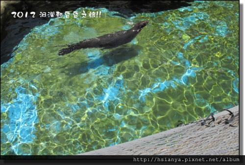 20120714海洋公園 (18)