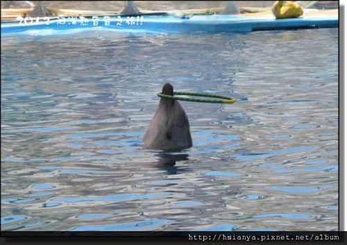 20120714海洋公園 (30)