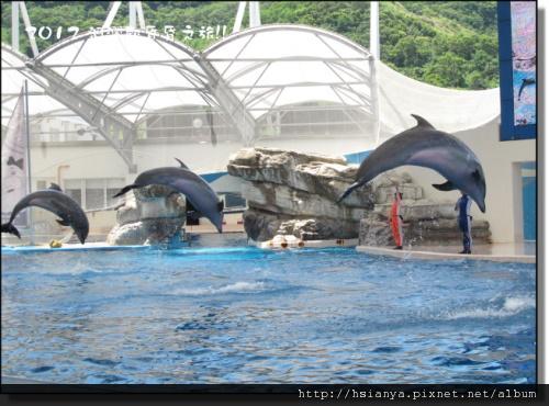 20120714海洋公園 (31)