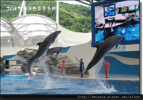 20120714海洋公園 (32)