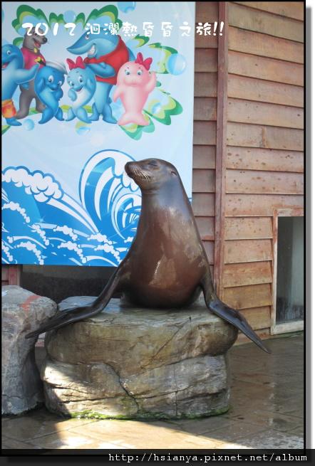 20120714海洋公園 (53)