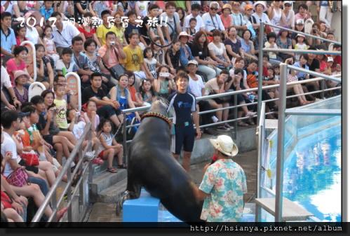20120714海洋公園 (64)