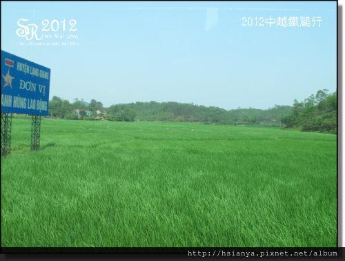 2012-17越南 (11)