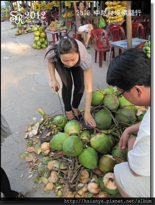2012-18越南水果攤 (4)