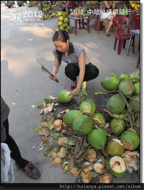 2012-18越南水果攤 (5)