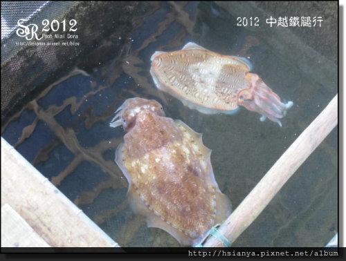 2012-20下龍灣遊船 (17)