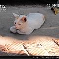 2012-26河內三十六古街 (18)