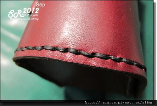 IMG_9381