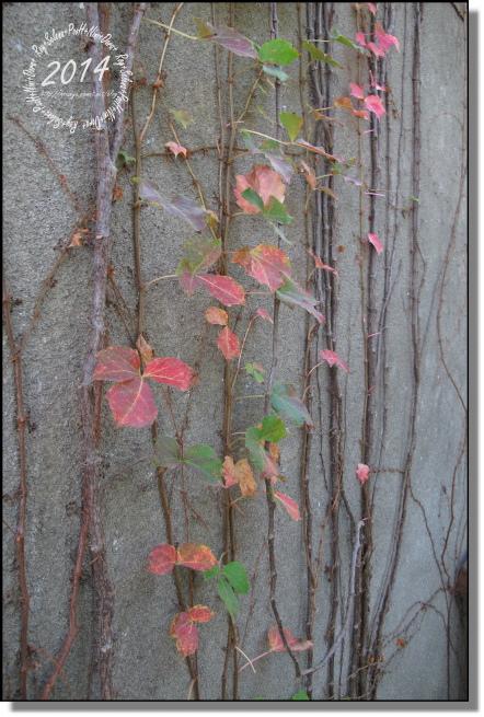 20140112-松園別館 (10)