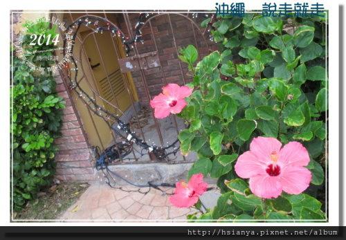 2014OKA-05美國村 (46)