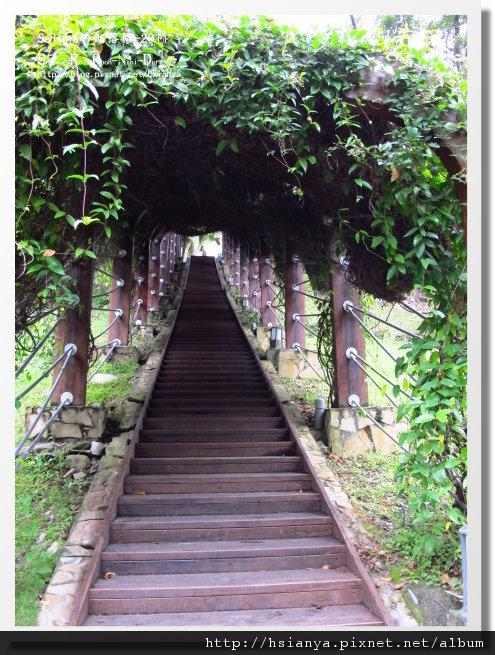 P0413-知本森林遊樂區 (17).JPG