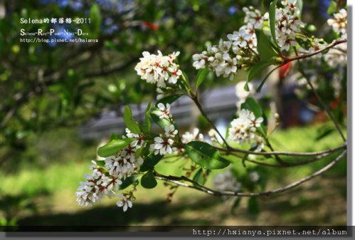 P0227卑南文化園區-- (5).jpg