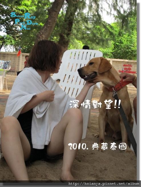 P991119-翡翠灣沙灘 (7).JPG
