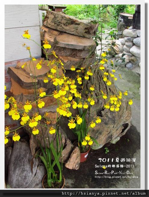 20110515四代務農 (18).JPG