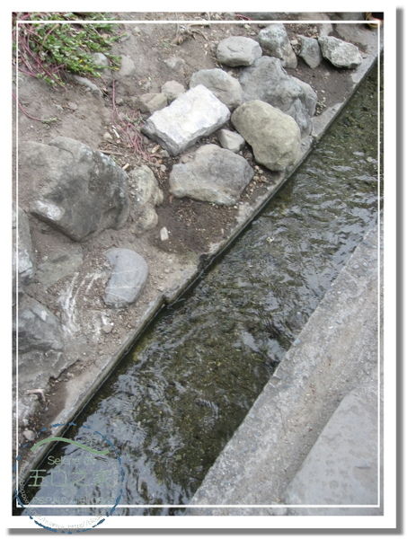 980102-台東之行-水往上流