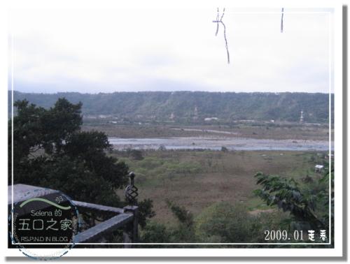 9801河岸森林 (26).jpg