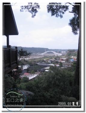 9801河岸森林 (27).jpg