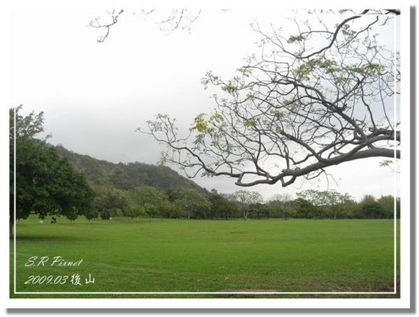 P980227-後山 (36).jpg