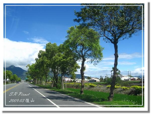 P980227-後山 (69).jpg
