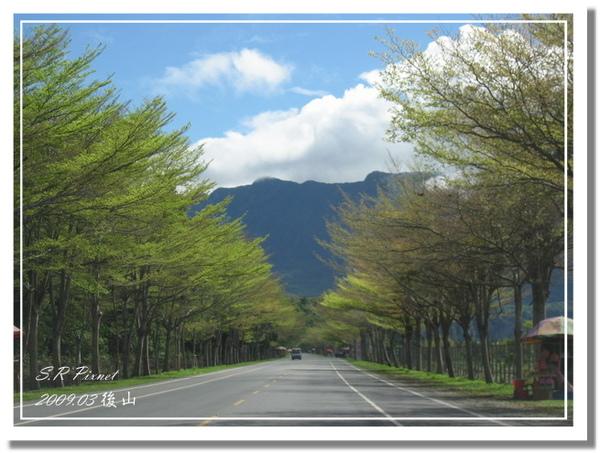 P980227-後山 (54).jpg