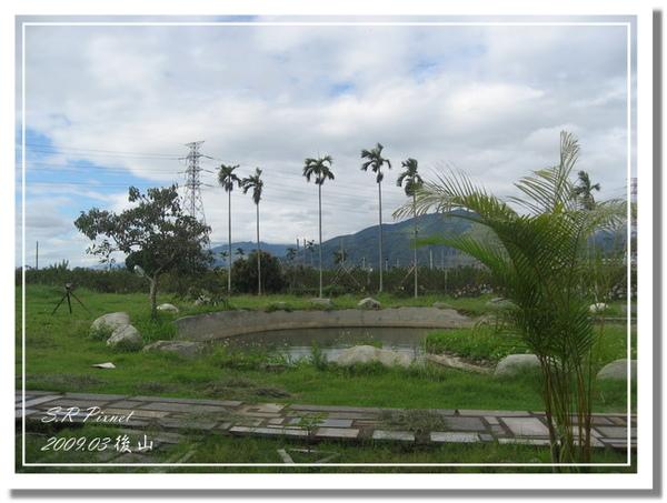P980227-後山 (161).jpg