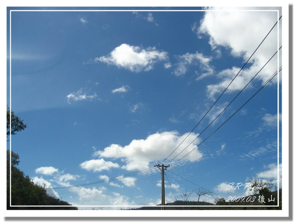 P980227-後山 (237).jpg