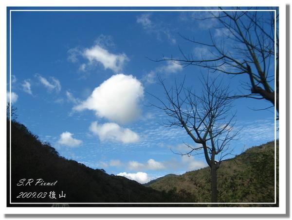 P980227-後山 (236).jpg