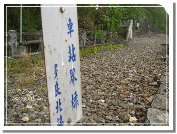 P980227-後山 (212).jpg