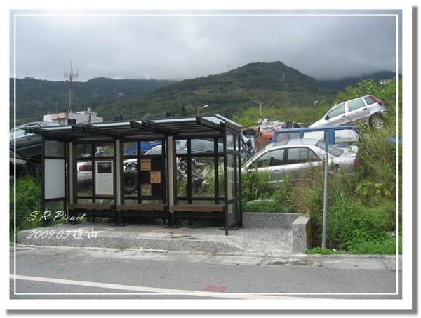 P980227-後山 (201).jpg