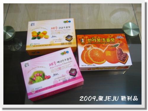 2009.瘋濟州紀念品 (8).JPG