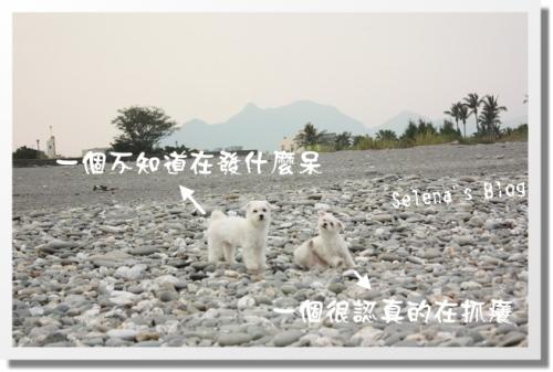 980523 台東之旅 (44).JPG