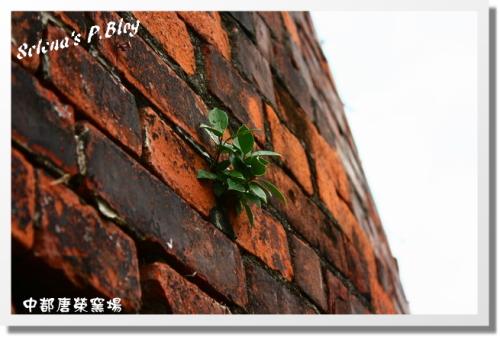 980712中都窯場 (26).JPG