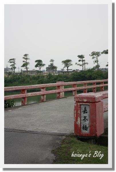 981221珍珠社區遊 (6).JPG