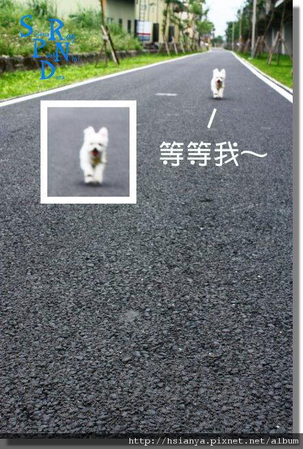990514冬山河騎腳踏車 (28).JPG