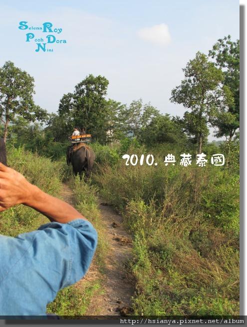 P991117-叢林騎大象 (3).JPG