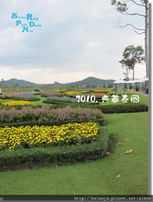P991118-葡萄園 (4).JPG