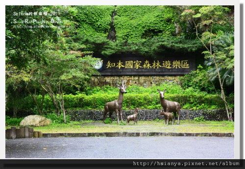 P0413-知本森林遊樂區.JPG