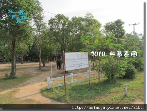 P991117-叢林騎大象 (6).jpg