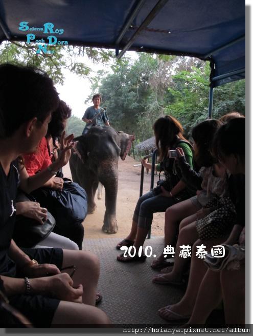 P991117-大象洗澡 (3).jpg