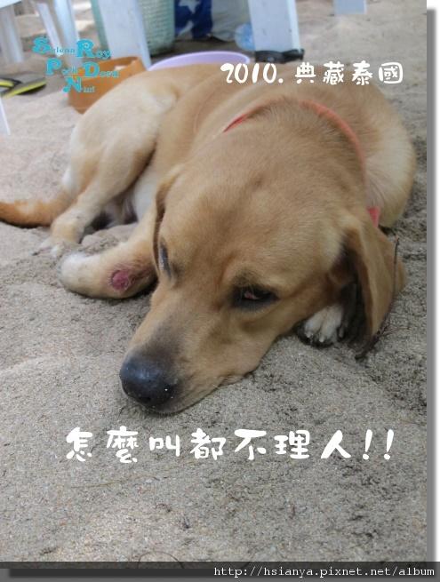 P991119-翡翠灣沙灘 (30).JPG