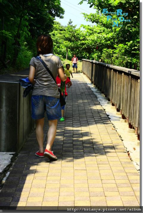 P9908-小琉球花瓶石步道 (17).JPG
