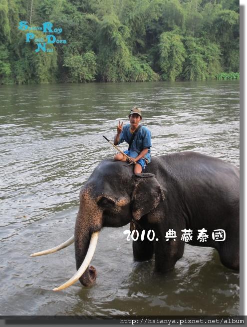 P991117-大象洗澡 (1).jpg