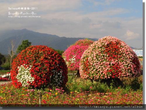 P0227池上.關山 (6).jpg