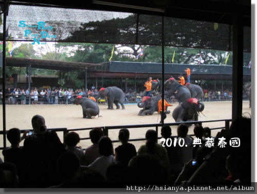 P991118-東芭樂園 (6).JPG