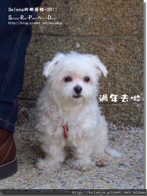 P0205台南 (21).JPG