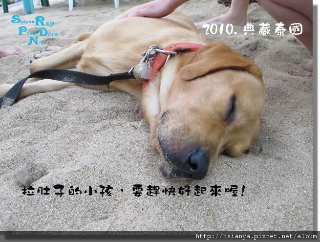 P991119-翡翠灣沙灘 (5).JPG