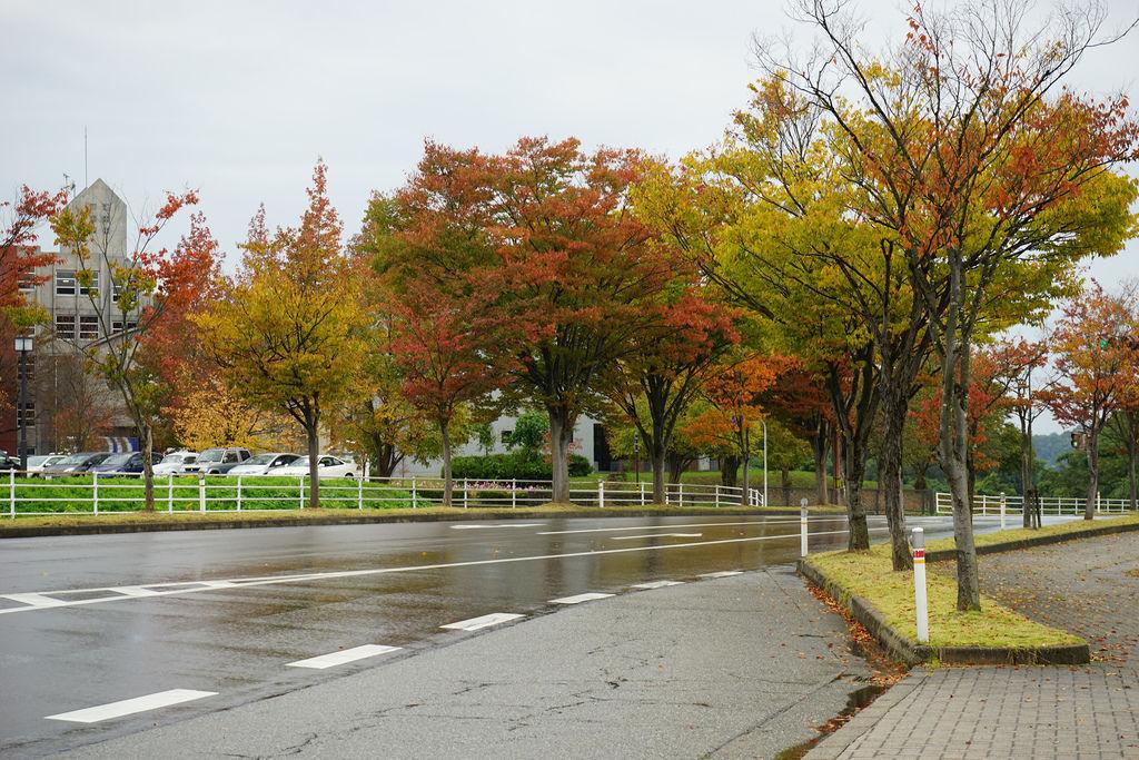 D3-05 金澤大學.jpg