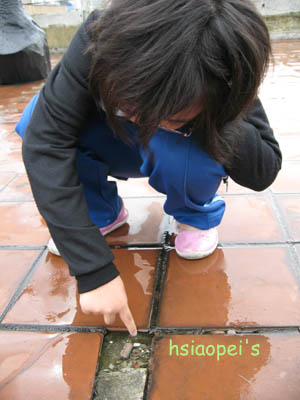 090511在台北國際藝術村3--玩水的meigo.jpg