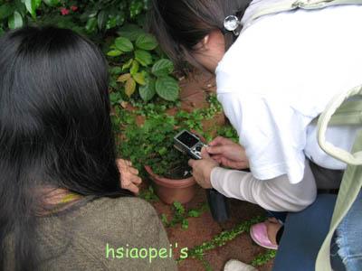 090511在台北國際藝術村8--埋牙.jpg